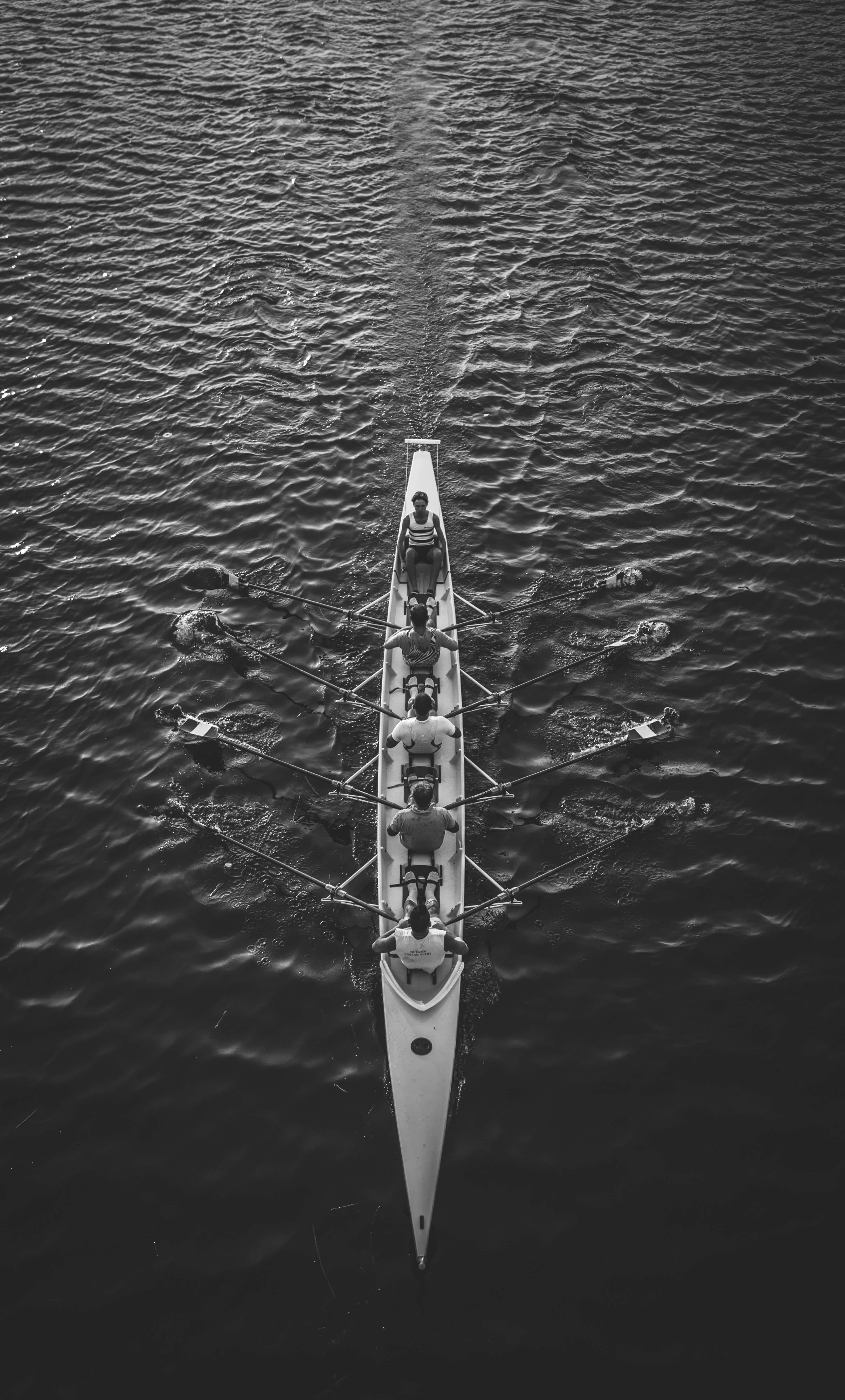 black and white birds eye view photo of people rowing